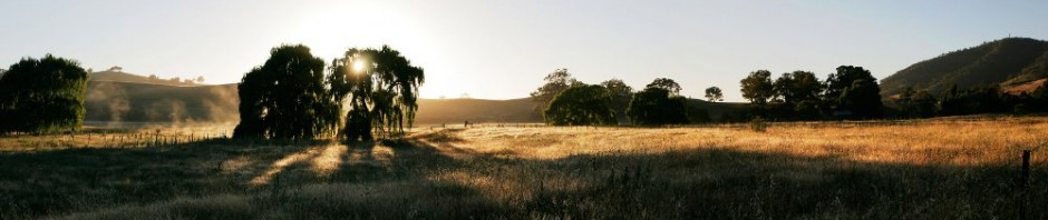 Dawn_at_swifts_creek_panorama